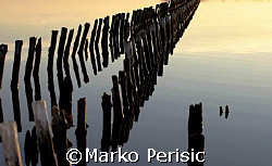 Reflections by Marko Perisic 